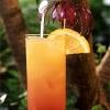 food-drink_001