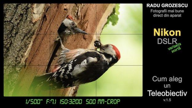 Ebook foto: Cum aleg un Teleobiectiv pentru Nikon DSLR